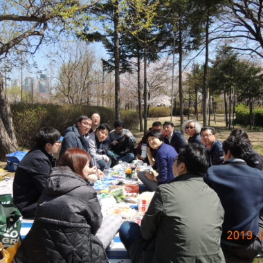 2019-벚꽃-봄소풍_선유도공원.jpg